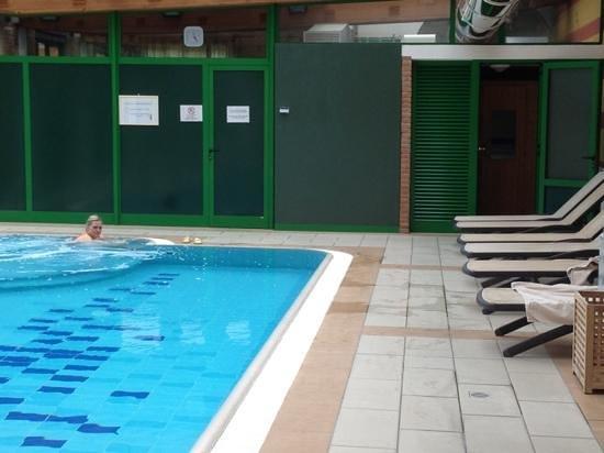 Hotel Villa Malaspina: piscina