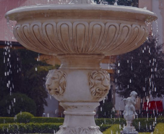 Chateau of Jemniste: Fountain