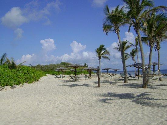 Nisbet Plantation Beach Club: The beach at Nisbet