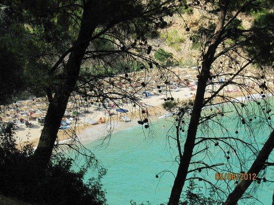 Residence I Delfini di Pugnochiuso: panorama spiaggia