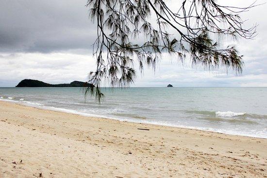 รีสอร์ทซีเทมเพิล & สปาปาล์มโคฟ: The beach out the front of the resort