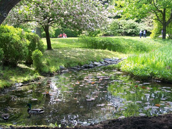 Japanese garden montreal 2018 all you need to know before you go with photos tripadvisor - Photo jardin japonais ...