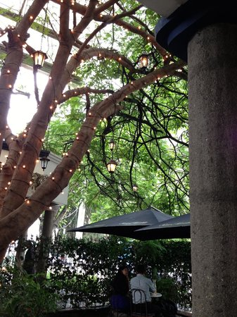 San Martín: Outdoor seating with lantern tree