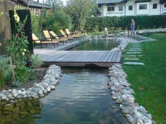 Tiefenbrunner Hotel: kniep Pool