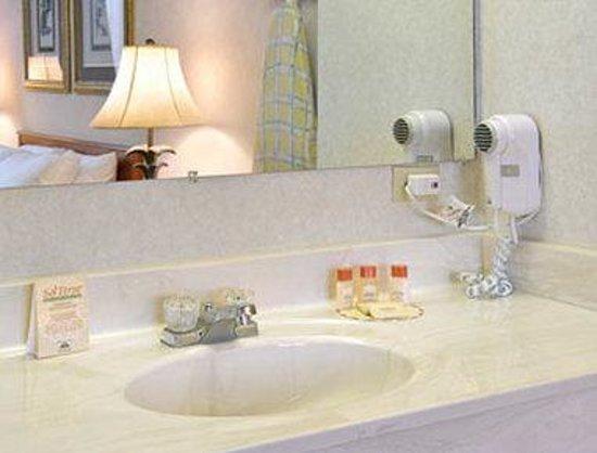 Elkins Inn & Suites: Bathroom