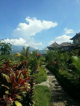 Great Mountain Views Villa Resort: on a clear day