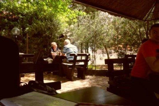 Hotel Baletna Skola: The Konoba garden