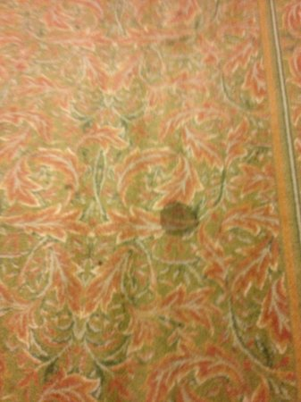 Homewood Suites Ocala at Heath Brook: stains on hall carpeting