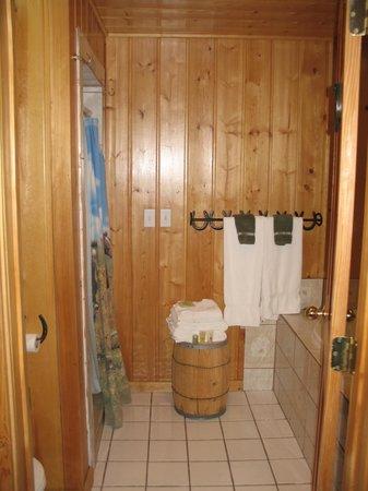 Cabin Creek Inn: Looking into bathroom from main room