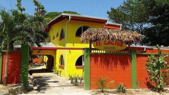 Hostel El Cactus Samara