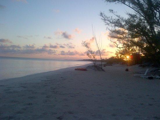 Pigeon Cay Beach Club: the beach at the resort