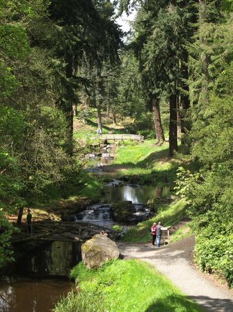 Cragside House and Gardens 사진