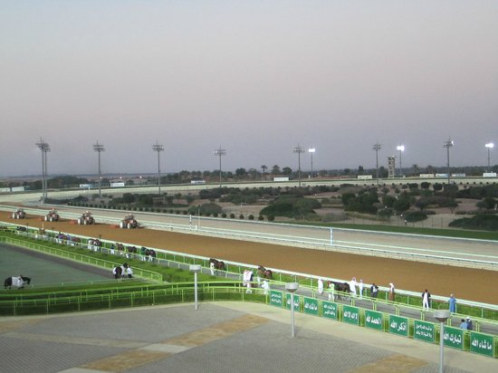 Equestrian Club of Riyadh: Plowing the track before each race @ Riyadh Race course