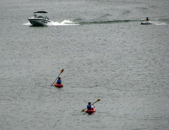 Fox Run Resort : Water skiing is an option but have to head into town to rent motor boat.