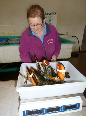 Ryer Lobsters: Choose your size...very economical and so tasty!