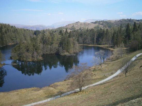 Monk Coniston: View of nearby Tarn Hows