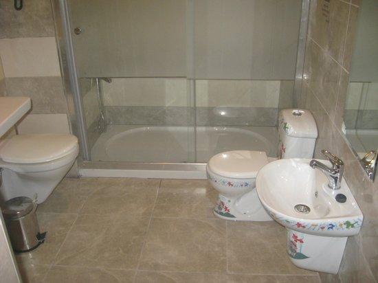 Club Exelsior: useful infant toilet/sink