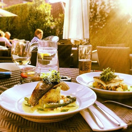 Wiveton Bell: Fillet of Seabass and Darn of Cod - beautiful!