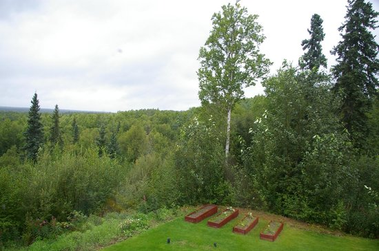 Talkeetna Denali View Lodge & Cabins: View from room