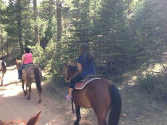 Old Stage Riding Stables: Nice trail