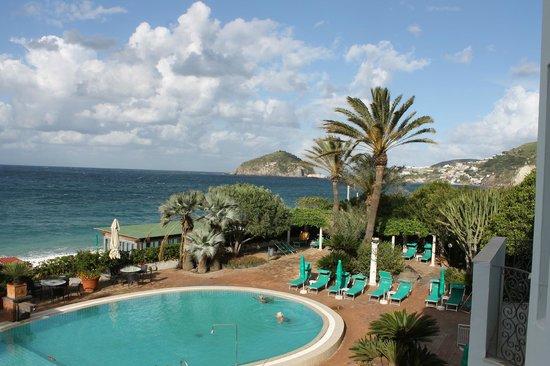 Hotel Parco Smeraldo Terme: Pool