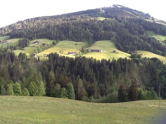 Gästehaus Larch Foto