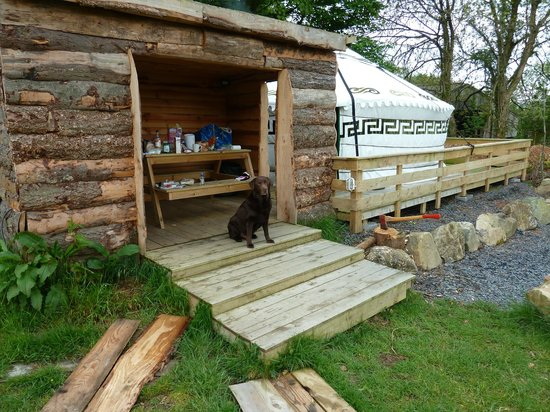 Gwaun View Yurts: Even the dog loved it1
