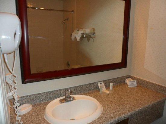 Comfort Inn Cordelia: Sink and mirror