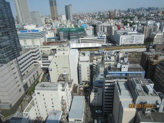 Hotel Metropolitan Tokyo Ikebukuro: I can see the trains too