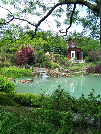 Le jardin de chine photo de jardin botanique de montreal for Camping le jardin botanique limeray