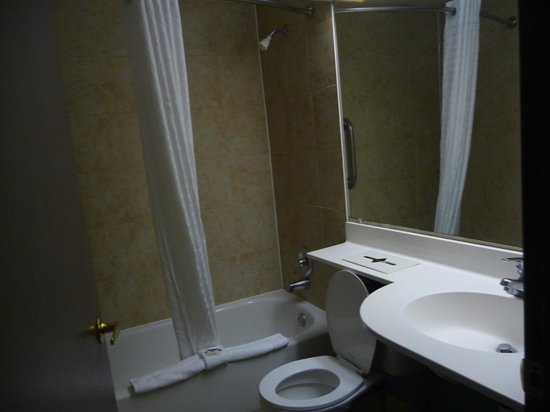 Microtel Inn & Suites By Wyndham Lexington: Bathroom