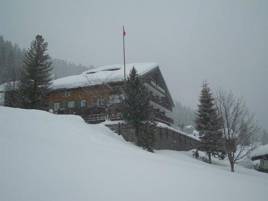 Hotel Alpenrose: Tief verschneite Alpenrose