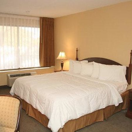 Mansion View Inn: 1 Bed