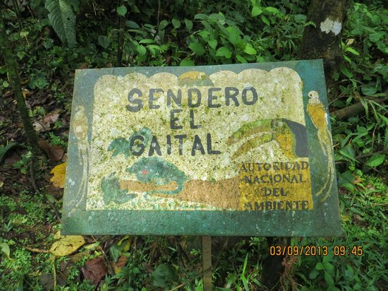 Gaital National Park: Gaital Trail