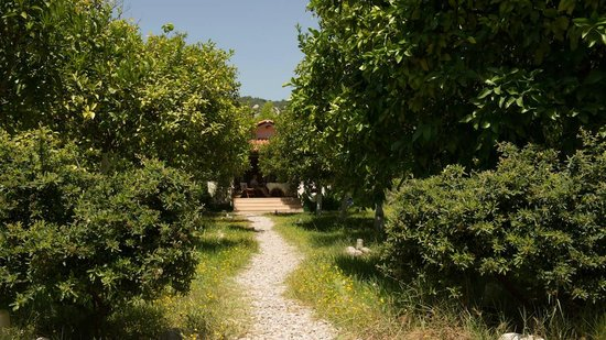 Akdeniz Bahcesi: Path to one of the guest houses