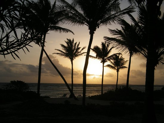 The Palms at Pelican Cove: dawn from our room