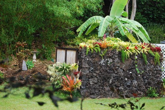 Ka'awa Loa Plantation: Outside showers