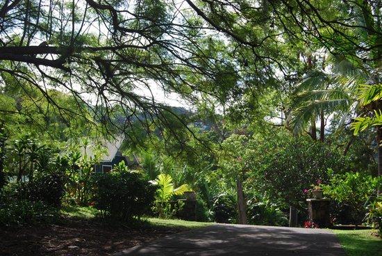 Ka'awa Loa Plantation: Our separate cottage