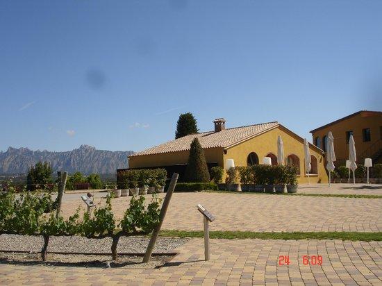Can Bonastre Wine Resort: Espacio donde ensayamos