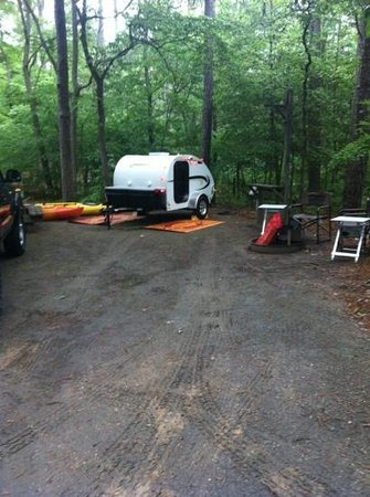 Pocomoke River State Park: site 108. cozy for our teardrop!