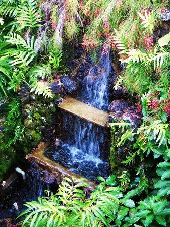 Garden Island Inn Hotel : Garden waterfall