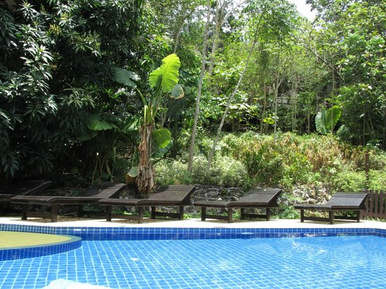 J.J. Bungalow & Guest house: swimming pool
