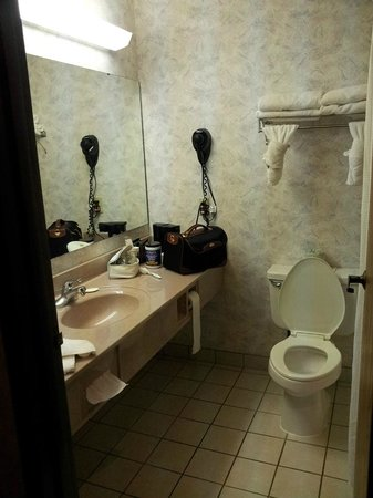 Hometown Inn and Suites: Plenty of space to place your toilettetries