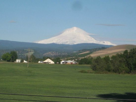 View of Mt Hood from east side from room at Balch Hotel