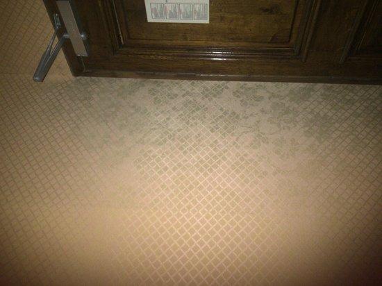 Hôtel Amarante Beau Manoir : Mold/damp