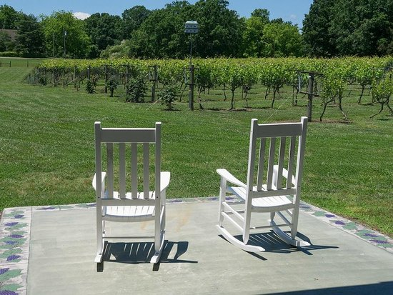 Benjamin Vineyards : This is where you'd want to relax in - some of the rocking chairs, while sipping on some superb