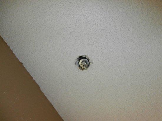 Quality Inn & Suites Fort Jackson Maingate: ceiling in bathroom, needs repair