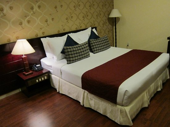Asian Ruby Luxury Hotel: room