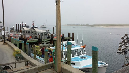 Chatham Gables Inn: Attraction nearby ~ Chatham Harbor Fish Market