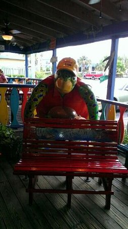 Frenchy's Saltwater Cafe : the turtle at the entrance